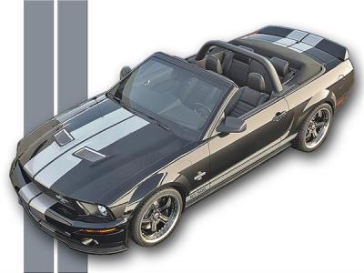 O.E.M Factory graphics for Mustangs